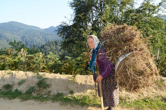 Bu fotoğraf temsilidir. Fotoğraf: Adnan Öztürk