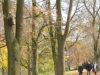 Almanya-Bielefeld kalesinde (Sparrenburg) bir Sonbahar yürüyüşü.. Foto: Adnan Öztürk